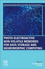 Photo-Electroactive Non-Volatile Memories for Data Storage and Neuromorphic Computing