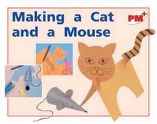 Making a Cat and a Mouse PM PLUS Non Fiction Level 5&6 Play Red