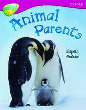 Oxford Reading Tree: Level 10A: TreeTops More Non-Fiction: Animal Parents