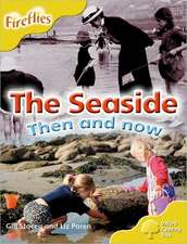 Oxford Reading Tree: Level 5: More Fireflies A: The Seaside
