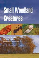 Small Woodland Creatures