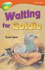 Oxford Reading Tree: Level 13: TreeTops Stories: Waiting for Goldie