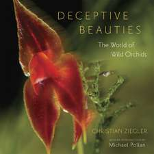 Deceptive Beauties: The World of Wild Orchids
