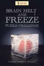 Brain Melt and Freeze Puzzle Challenge