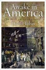 Awake in America: On Irish American Poetry