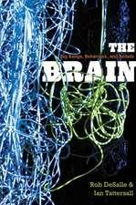 The Brain – Big Bangs, Behaviors and Beliefs