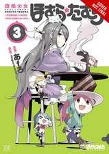 Puella Magi Homura Tamura, Vol. 3: ~Parallel Worlds Do Not Remain Parallel Forever~