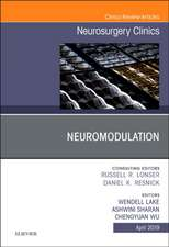 Neuromodulation, An Issue of Neurosurgery Clinics of North America