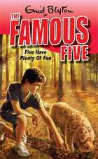 Blyton, E: Five Have Plenty Of Fun