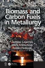 Biomass and Carbon Fuels in Metallurgy