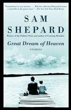 Great Dream of Heaven