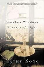 Frameless Windows Squares of Light – Poems