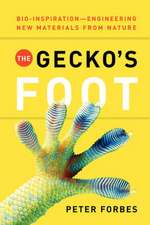 The Gecko's Foot:  Engineered from Nature