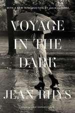 Voyage in the Dark – A Novel