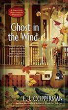 Ghost In The Wind: A Haunted Guesthouse Mystery