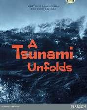 Bug Club Pro Guided Year 6 A Tsunami Unfolds