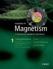 Handbook of Magnetism and Advanced Magnetic Materials: 5 Volume Set