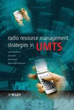 Radio Resource Management Strategies in UMTS