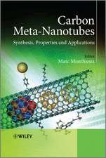 Carbon Meta–Nanotubes: Synthesis, Properties and Applications