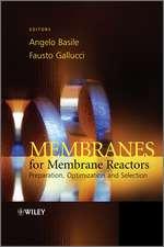 Membranes for Membrane Reactors: Preparation, Optimization and Selection