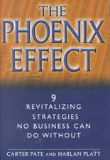 The Phoenix Effect: 9 Revitalizing Strategies No Business Can Do Without