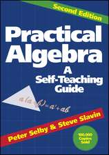 Practical Algebra: A Self–Teaching Guide
