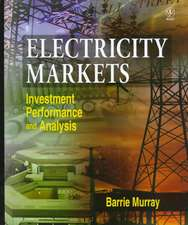 Electricity Markets: Investment, Performance and Analysis