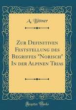 Zur Definitiven Feststellung Des Begriffes Norisch in Der Alpinen Trias (Classic Reprint)