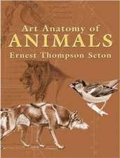 Art Anatomy of Animals:  A Study in American Politics