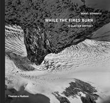 While the Fires Burn