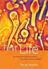 First Life:  Discovering the Connections Between Stars, Planets, and How Life Began