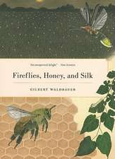 Fireflies, Honey and Silk