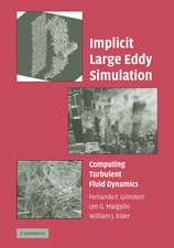 Implicit Large Eddy Simulation: Computing Turbulent Fluid Dynamics