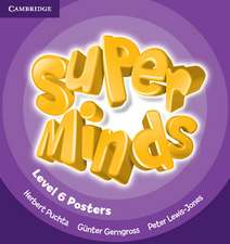 Super Minds Level 6 Posters (10)