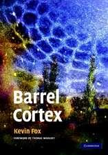 Barrel Cortex