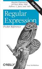 Regular Expression Pocket Reference 2e