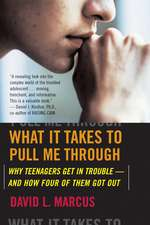 What It Takes To Pull Me Through: Why Teenagers Get in Trouble and How Four of Them Got Out