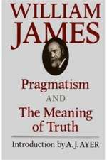 Pragmatism & the Meaning of Truth (Paper)
