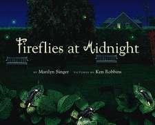 Fireflies at Midnight