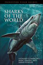 Sharks of the World:  An Ethnography of Global Connection
