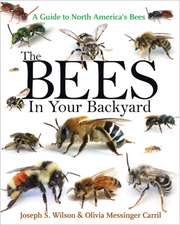 The Bees in Your Backyard – A Guide to North America`s Bees