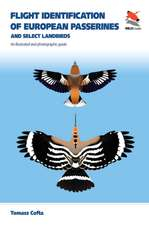 Flight Identification of European Passerines and – An Illustrated and Photographic Guide