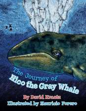 The Journey of Nico the Gray Whale