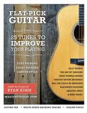 Flat-Pick Guitar 1