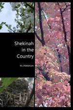 Shekinah in the Country