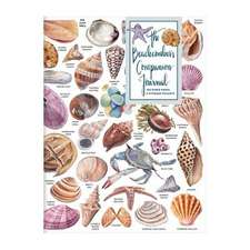 Beachcomber's Companion PVC Multi-Pocket Cover Journal