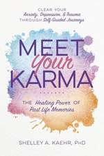 Meet Your Karma: The Healing Power of Past Life Memories