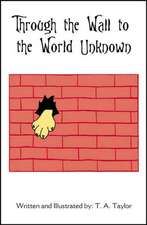 Through the Wall to the World Unknown