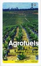Agrofuels: Big Profits, Ruined Lives and Ecological Destruction