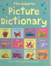Brooks, F: Picture Dictionary